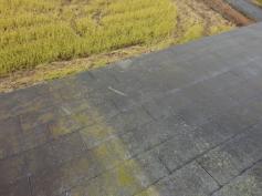 屋根カビ コケ 調査