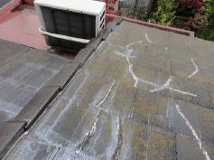 屋根塗装 カビコケ 藻