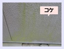 岡崎外壁 雨漏り修理 外壁塗装