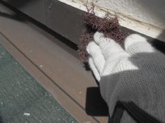 岡崎塗装 塗替え 屋根防水