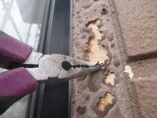 西尾外壁 塗装 遮熱