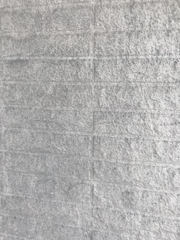 外壁塗装 岡崎 施工事例シリコン