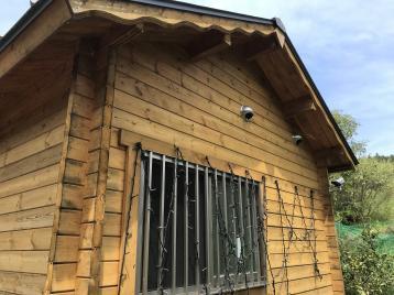 木部塗装 調査時