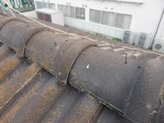 塗装 遮熱 屋根